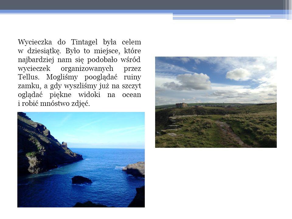 Wycieczka do Tintagel była celem w dziesiątkę. Było to miejsce, które najbardziej nam się podobało wśród wycieczek organizowanych przez Tellus. Mogliś