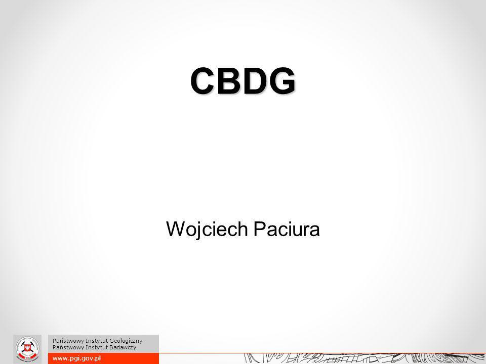 www.pgi.gov.pl Państwowy Instytut Geologiczny Państwowy Instytut Badawczy CBDG Wojciech Paciura