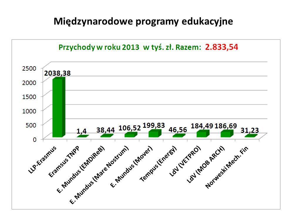 Międzynarodowe programy edukacyjne 31