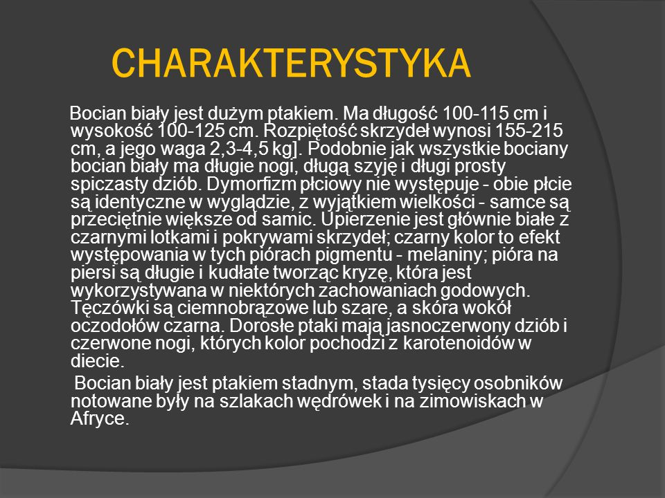 CHARAKTERYSTYKA Bocian biały jest dużym ptakiem. Ma długość 100-115 cm i wysokość 100-125 cm. Rozpiętość skrzydeł wynosi 155-215 cm, a jego waga 2,3-4