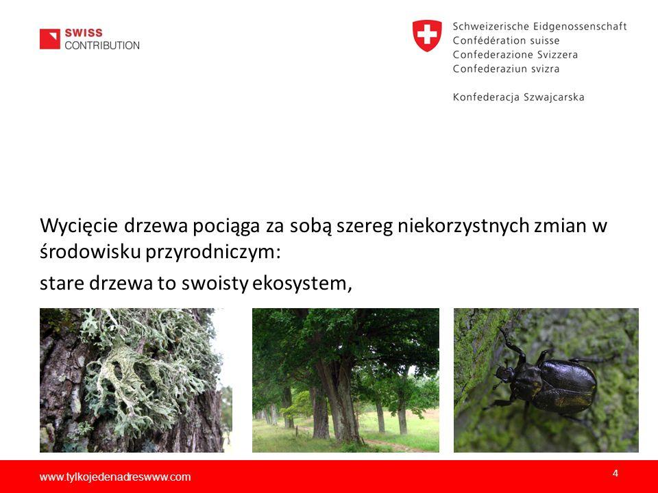 www.tylkojedenadreswww.com Wycięcie drzewa pociąga za sobą szereg niekorzystnych zmian w środowisku przyrodniczym: stare drzewa to swoisty ekosystem,