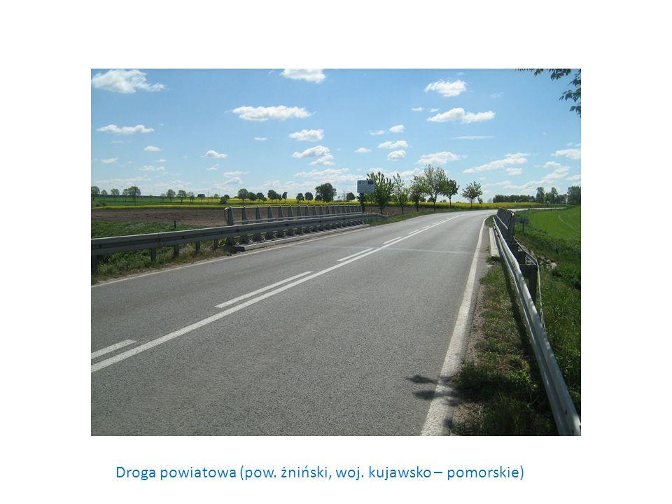 Droga powiatowa (pow. żniński, woj. kujawsko – pomorskie)
