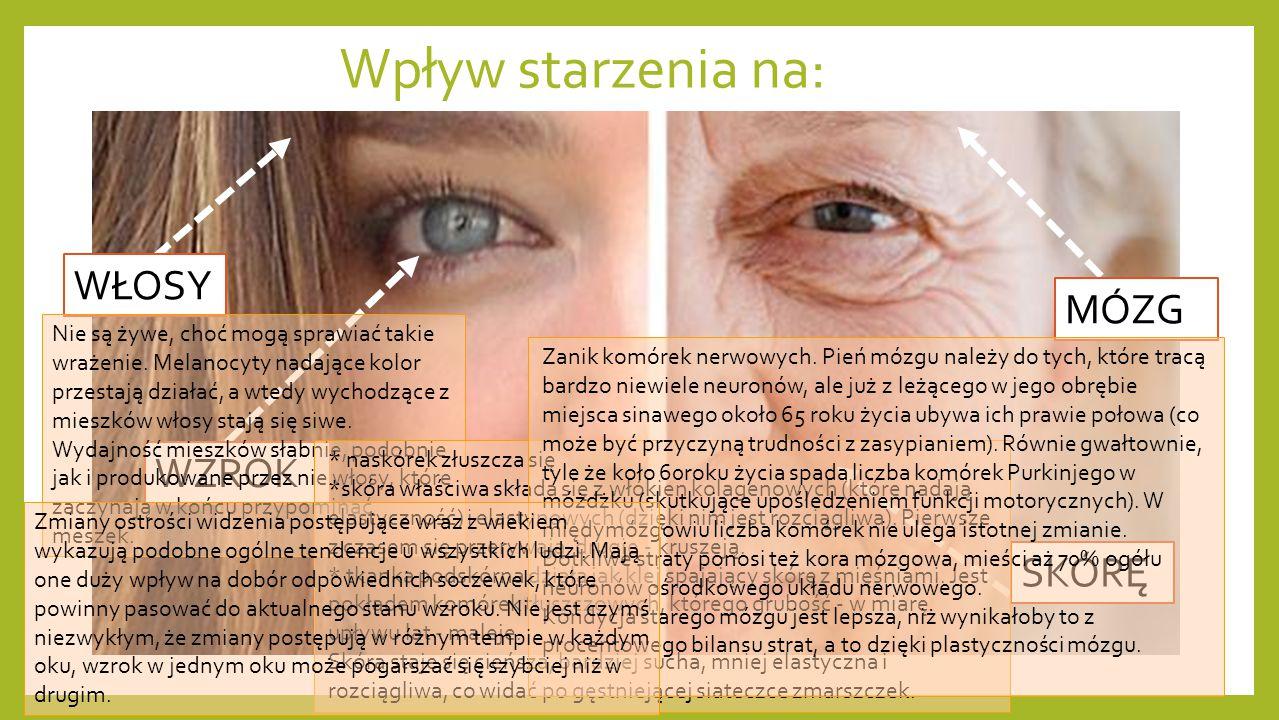 Wpływ starzenia na: SKÓRĘ MÓZG WZROK WŁOSY Nie są żywe, choć mogą sprawiać takie wrażenie. Melanocyty nadające kolor przestają działać, a wtedy wychod