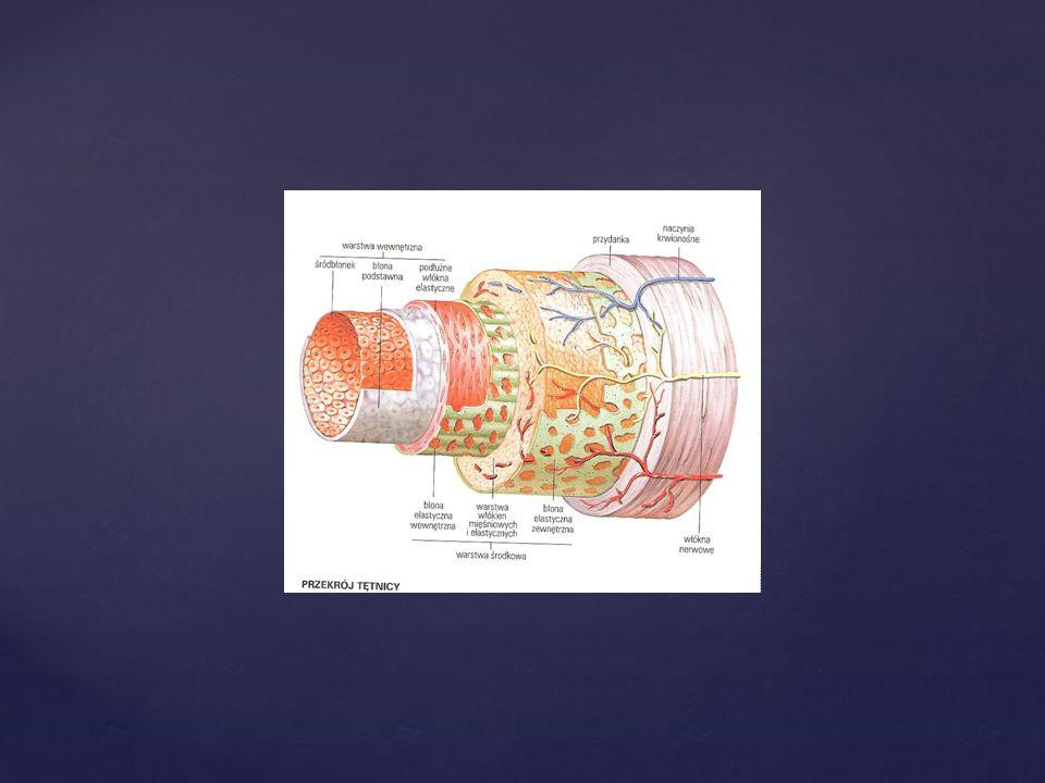 Ocena kliniczna stopnia niewydolności mikrokrążenia na stopie I a Obecność tętna obwodowego ( tętnica grzbietowa stopy i tętnica piszczelowa tylna I b brak tętna obwodowego ( tętnica grzbietowa stopy i tętnica piszczelowa tylna IIa prawidłowa gra włośniczkowa IIb wydłużona gra włośniczkowa IIIa prawidłowe, symetryczne ucieplenie stóp IIIb nieprawidłowe, asymetryczne ucieplenie stóp IVa obecność obrzęków w zakresie stopy IVb obecność obrzęków w zakresie stopy i goleni