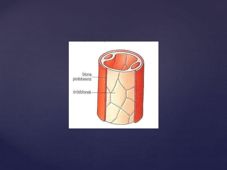 Przeciwwskazaniem do szeroko rozumianej ortonyksji jest kruchość, brak elastyczności płytki paznokciowej, brak wzrostu płytki oraz niekonsekwencja chorego w dalszej pielęgnacji paznokci.