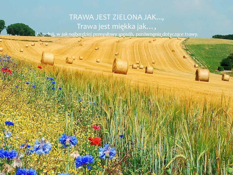 TRAWA JEST ZIELONA JAK..., Trawa jest miękka jak…, Uzupełnij, w jak najbardziej pomysłowy sposób, porównania dotyczące trawy.