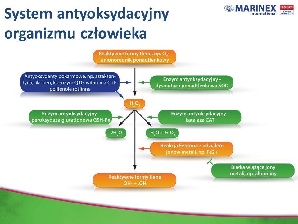 System antyoksydacyjny organizmu człowieka