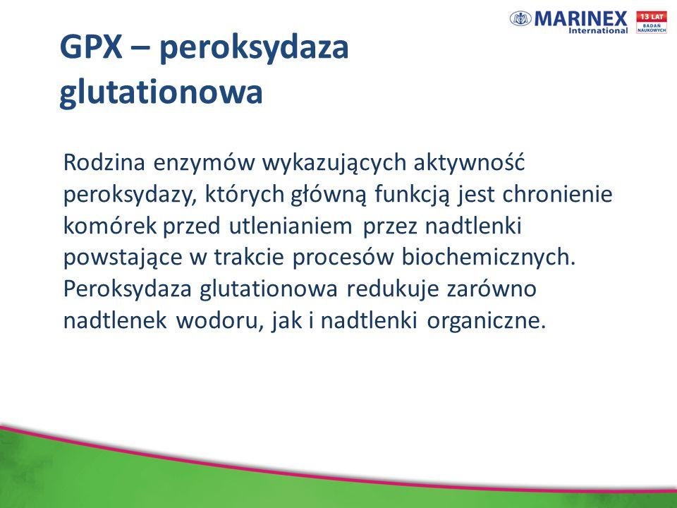 GPX – peroksydaza glutationowa Rodzina enzymów wykazujących aktywność peroksydazy, których główną funkcją jest chronienie komórek przed utlenianiem przez nadtlenki powstające w trakcie procesów biochemicznych.
