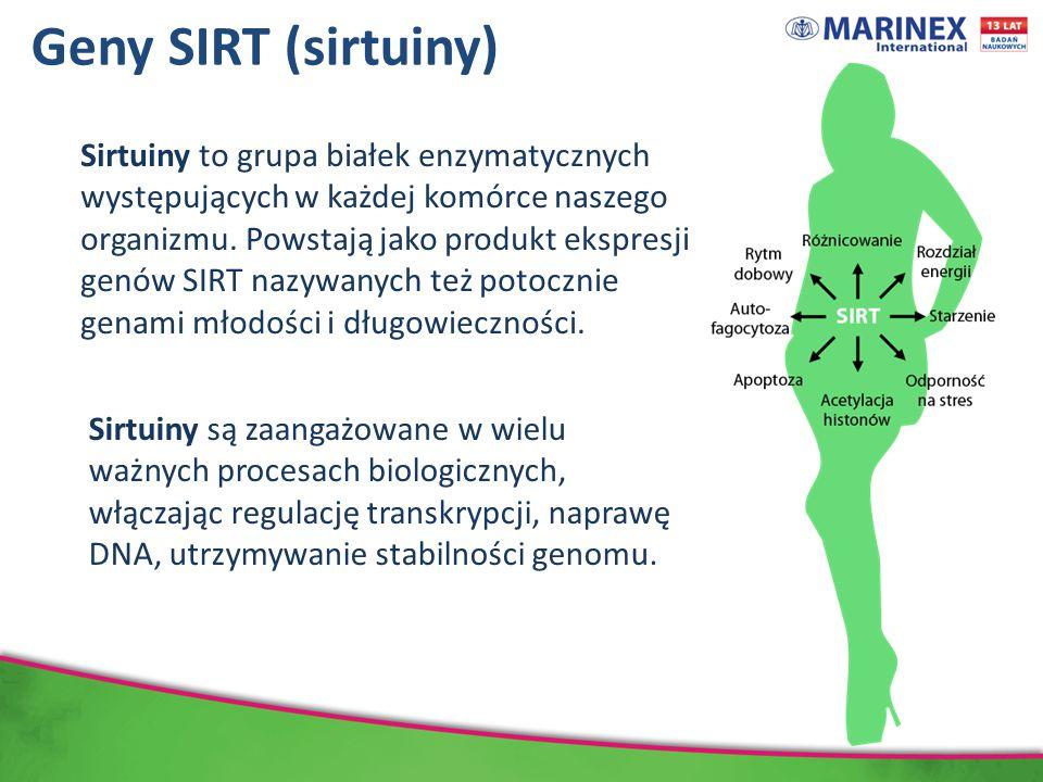 Geny SIRT (sirtuiny) Sirtuiny to grupa białek enzymatycznych występujących w każdej komórce naszego organizmu.