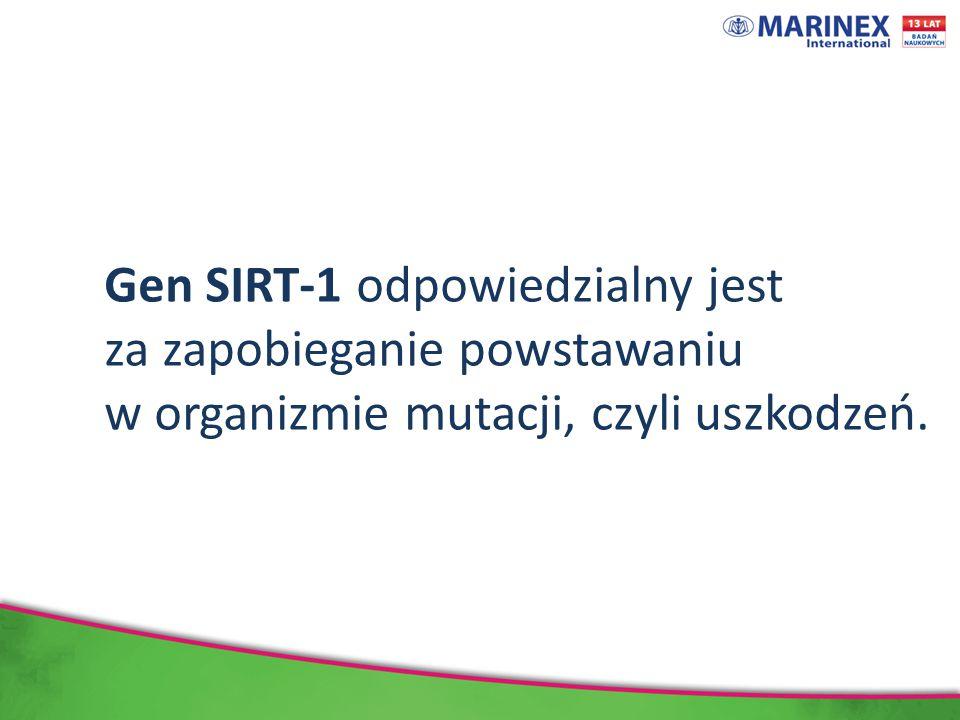 Gen SIRT-1 odpowiedzialny jest za zapobieganie powstawaniu w organizmie mutacji, czyli uszkodzeń.