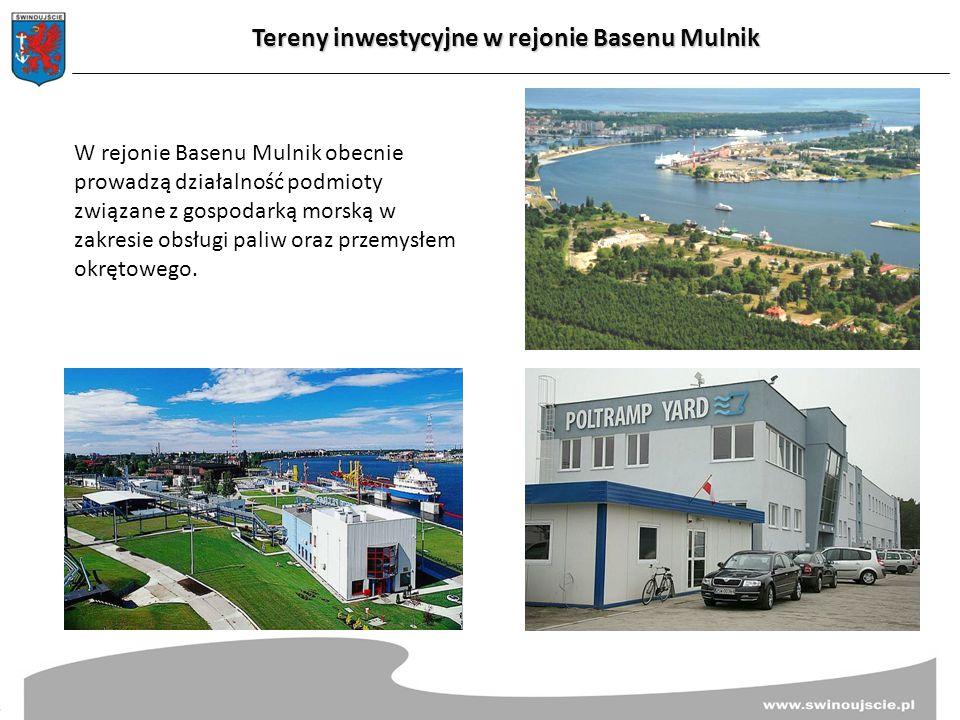 W rejonie Basenu Mulnik obecnie prowadzą działalność podmioty związane z gospodarką morską w zakresie obsługi paliw oraz przemysłem okrętowego.