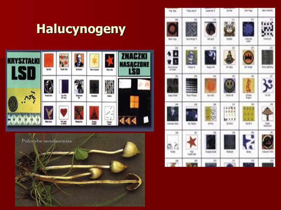 Halucynogeny