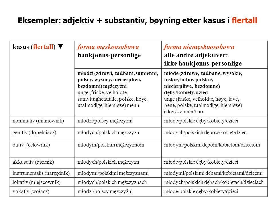 Noen substantiver bøyes som adjektiver (adjektivmønster) etternavn, som slutter på: -ski, -dzki, -cki (Sobieski, Zawadzki, Słowacki) -ska, -dzka, -cka (Sobieska, Zawadzka, Słowacka) -i, -y, -e (Verdi, Batory, Linde).