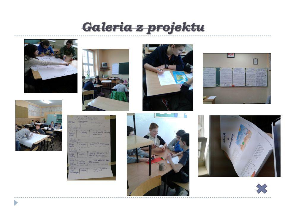 Galeria z projektu