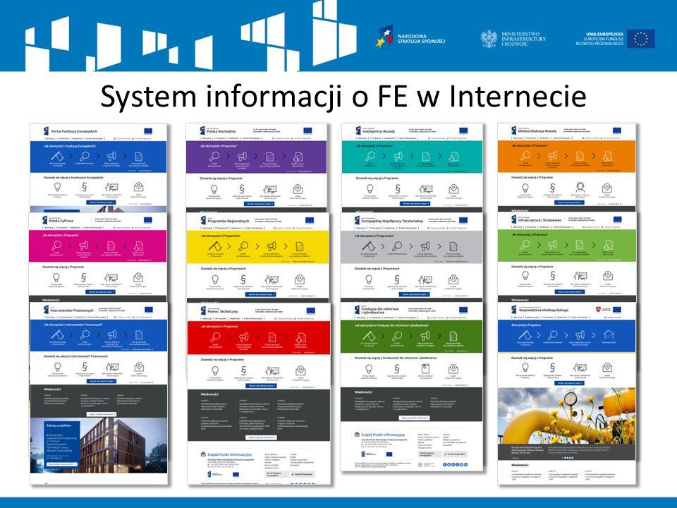 System informacji o FE w Internecie