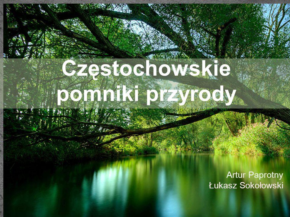 Lokalizacja: województwo - śląskie gmina - Częstochowa miejscowość - Częstochowa nr mapy ewidencyjnej - 152 nr działki - 3 bliższe określenie położenia - Park Podjasnogórski im.