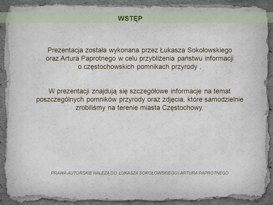 Artur Paprotny Łukasz Sokołowski Częstochowskie pomniki przyrody