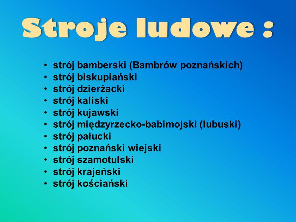 strój bamberski (Bambrów poznańskich) strój biskupiański strój dzierżacki strój kaliski strój kujawski strój międzyrzecko-babimojski (lubuski) strój p