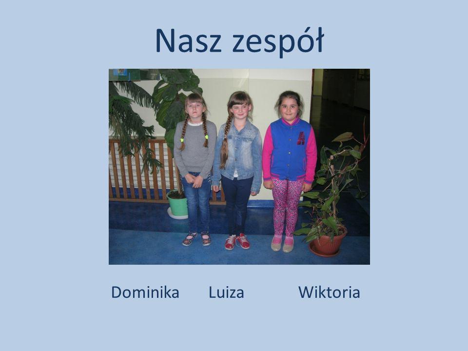Dominika LuizaWiktoria Nasz zespół