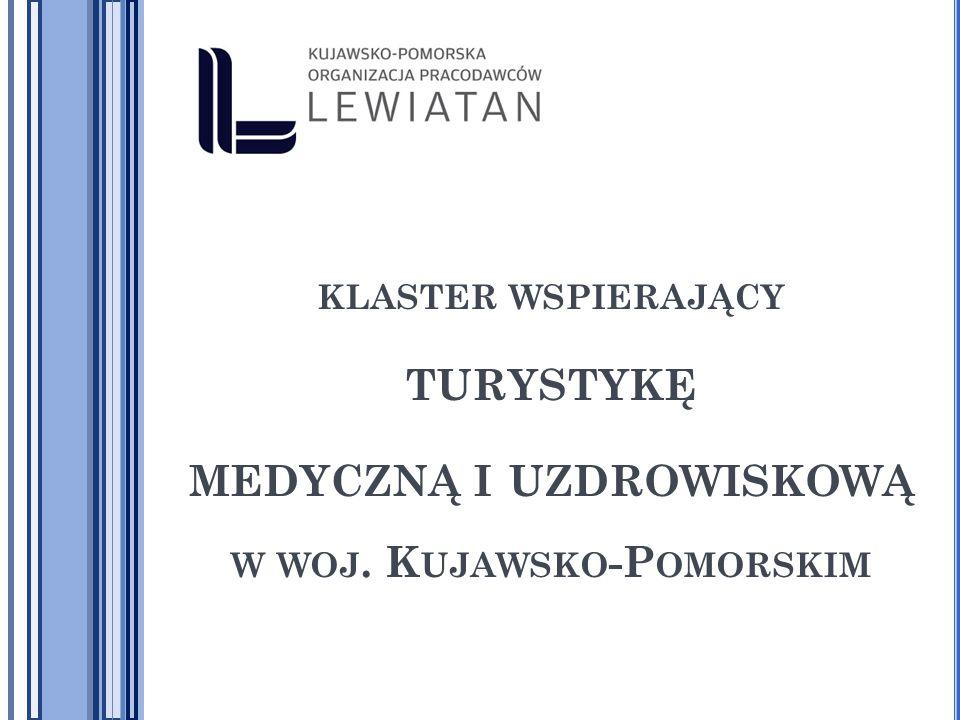 www.kpoplewiatan.pl Klastry są to geograficzne skupiska wzajemnie powiązanych firm, jednostek świadczących usługi, firm działających w pokrewnych sektorach i związanych z nimi instytucji w poszczególnych dziedzinach, konkurujących między sobą, ale także współpracujących.