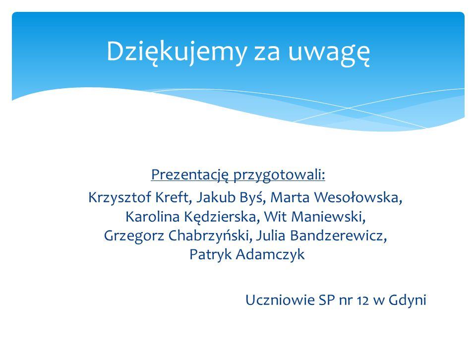 Prezentację przygotowali: Krzysztof Kreft, Jakub Byś, Marta Wesołowska, Karolina Kędzierska, Wit Maniewski, Grzegorz Chabrzyński, Julia Bandzerewicz,