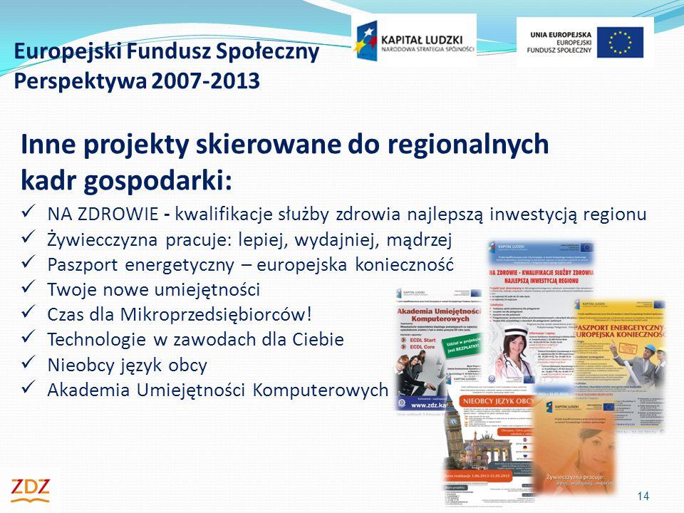 Europejski Fundusz Społeczny Perspektywa 2007-2013 14 Inne projekty skierowane do regionalnych kadr gospodarki: NA ZDROWIE - kwalifikacje służby zdrowia najlepszą inwestycją regionu Żywiecczyzna pracuje: lepiej, wydajniej, mądrzej Paszport energetyczny – europejska konieczność Twoje nowe umiejętności Czas dla Mikroprzedsiębiorców.