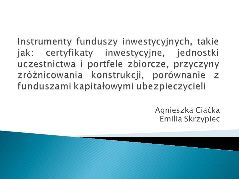  Czym są fundusze inwestycyjne.