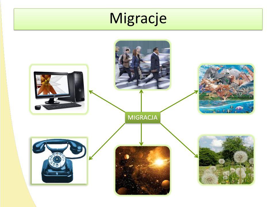Migracje MIGRACJA