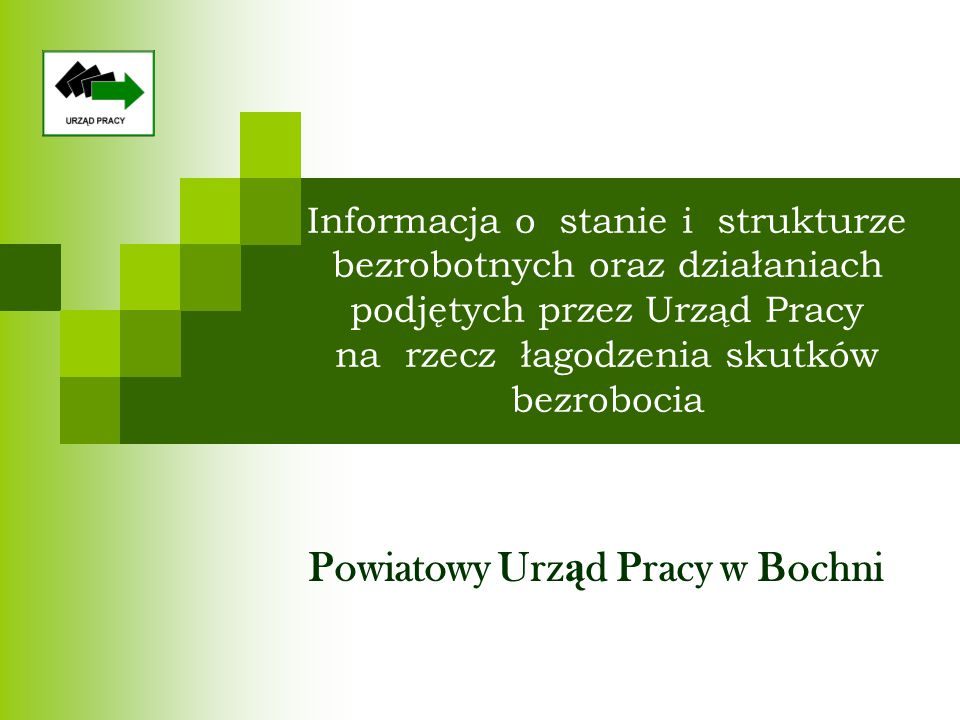 Informacja o stanie i strukturze bezrobotnych oraz działaniach podjętych przez Urząd Pracy na rzecz łagodzenia skutków bezrobocia Powiatowy Urz ą d Pracy w Bochni