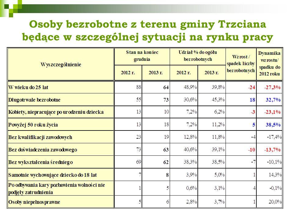 Osoby bezrobotne z terenu gminy Trzciana będące w szczególnej sytuacji na rynku pracy
