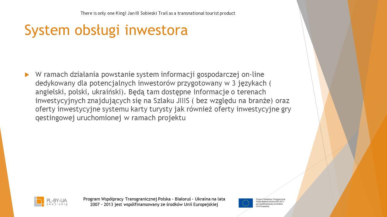 System obsługi inwestora  W ramach działania powstanie system informacji gospodarczej on-line dedykowany dla potencjalnych inwestorów przygotowany w
