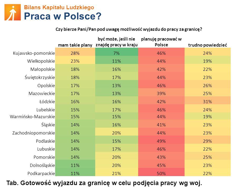 Bilans Kapitału Ludzkiego Praca w Polsce.