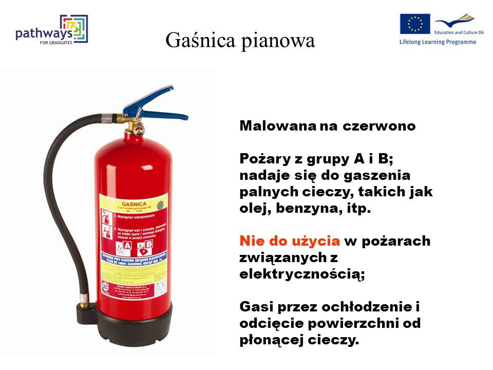 Gaśnica pianowa Malowana na czerwono Pożary z grupy A i B; nadaje się do gaszenia palnych cieczy, takich jak olej, benzyna, itp.