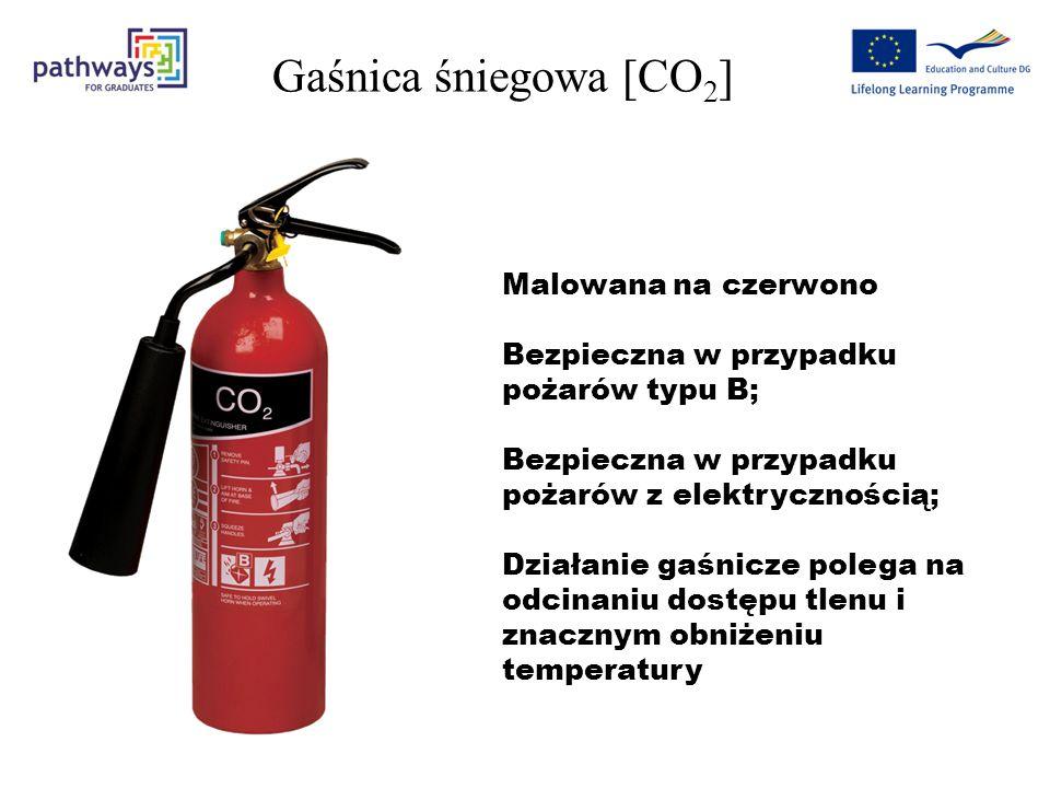 Gaśnica śniegowa [CO 2 ] Malowana na czerwono Bezpieczna w przypadku pożarów typu B; Bezpieczna w przypadku pożarów z elektrycznością; Działanie gaśnicze polega na odcinaniu dostępu tlenu i znacznym obniżeniu temperatury