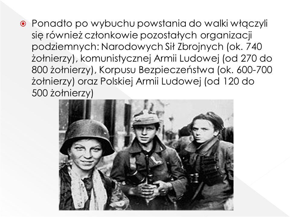  Ponadto po wybuchu powstania do walki włączyli się również członkowie pozostałych organizacji podziemnych: Narodowych Sił Zbrojnych (ok. 740 żołnier