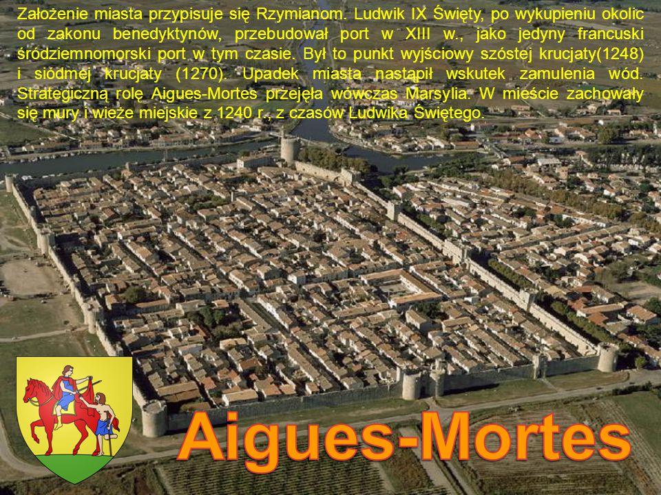 Założenie miasta przypisuje się Rzymianom. Ludwik IX Święty, po wykupieniu okolic od zakonu benedyktynów, przebudował port w XIII w., jako jedyny fran