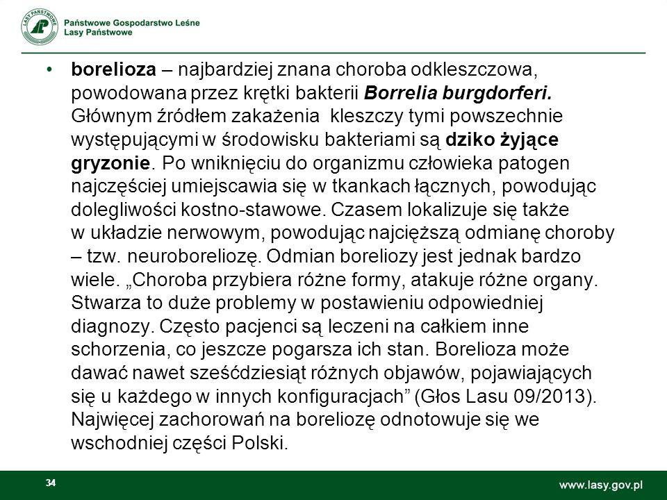 34 borelioza – najbardziej znana choroba odkleszczowa, powodowana przez krętki bakterii Borrelia burgdorferi. Głównym źródłem zakażenia kleszczy tymi