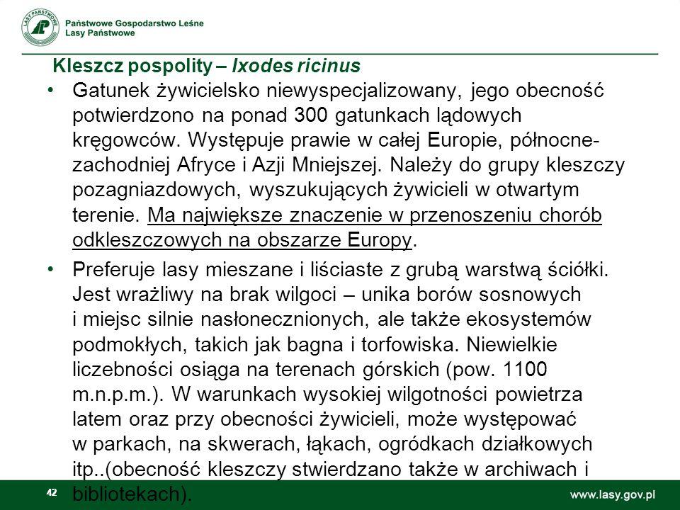 42 Kleszcz pospolity – Ixodes ricinus Gatunek żywicielsko niewyspecjalizowany, jego obecność potwierdzono na ponad 300 gatunkach lądowych kręgowców. W