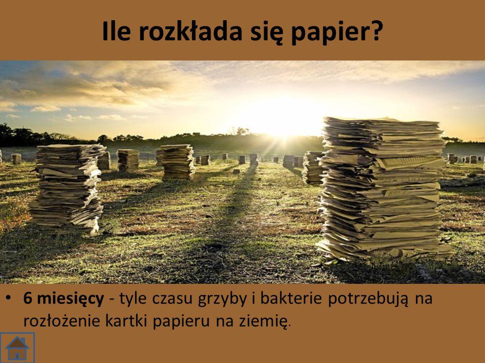 Ile rozkłada się papier? 6 miesięcy - tyle czasu grzyby i bakterie potrzebują na rozłożenie kartki papieru na ziemię.