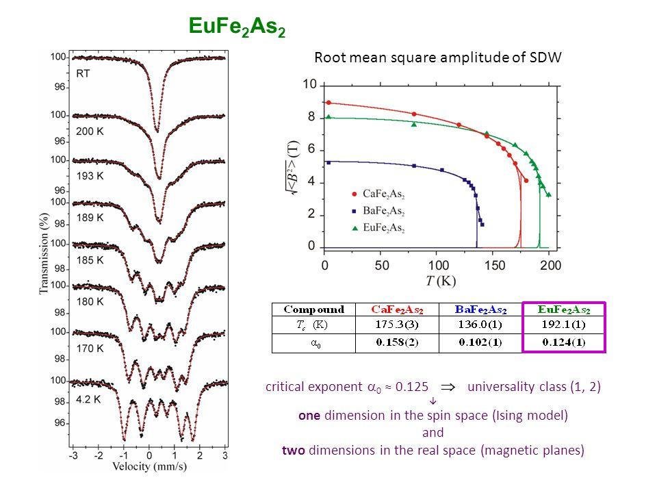 (Eu 1-y Ca y )(Fe 2-x Co x )As 2 57 Fe Mössbauer spectra T SDW = 192 K T SDW  100 K T SDW  80 K lack of SDW T N (Eu) = 19 K Eu 2+ Transferred Field on 57 Fe filamentary superconductivity