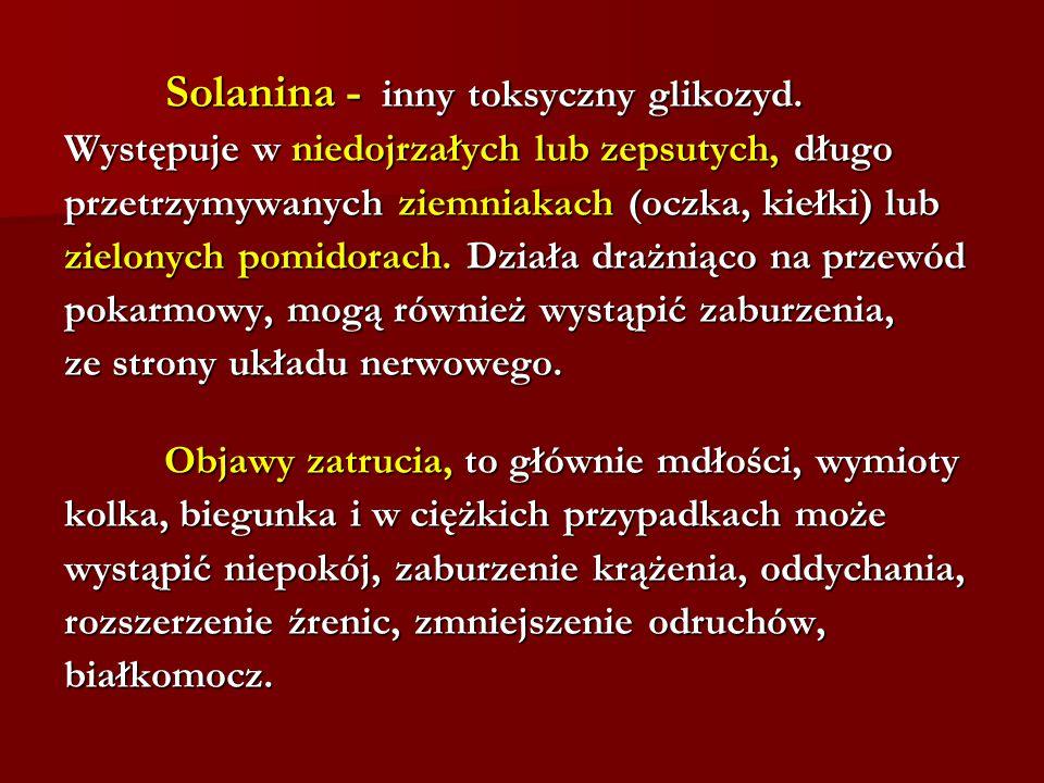 Solanina - inny toksyczny glikozyd. Solanina - inny toksyczny glikozyd. Występuje w niedojrzałych lub zepsutych, długo przetrzymywanych ziemniakach (o