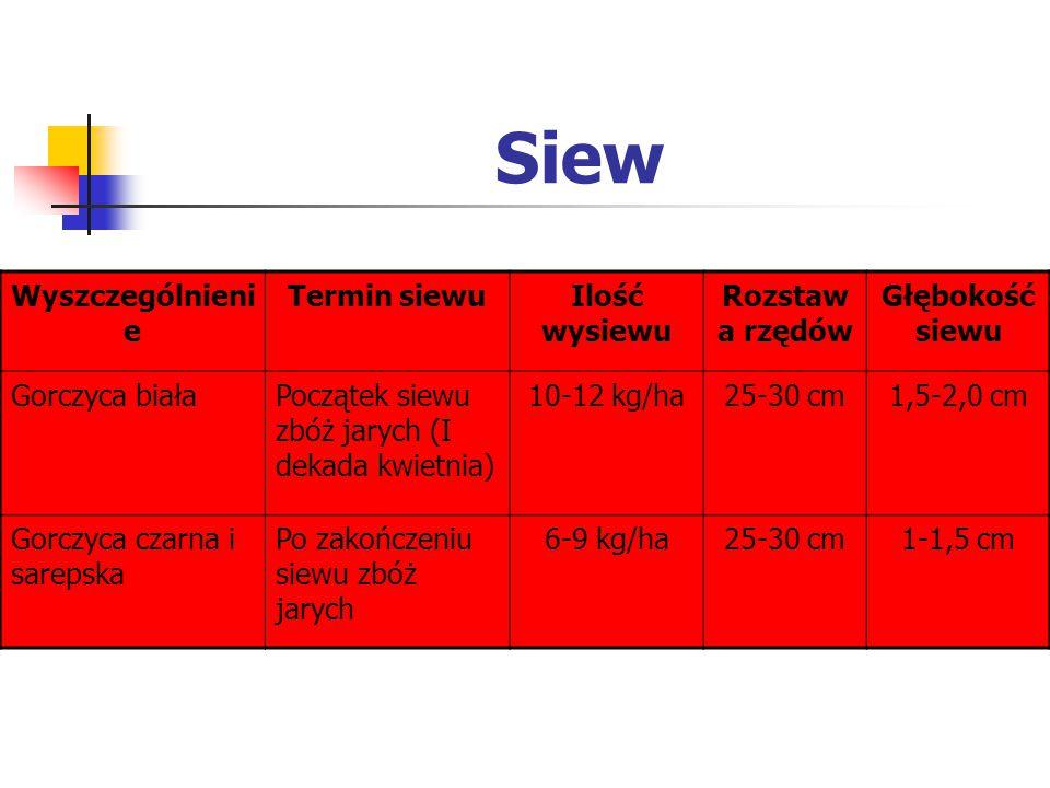 Siew Wyszczególnieni e Termin siewuIlość wysiewu Rozstaw a rzędów Głębokość siewu Gorczyca białaPoczątek siewu zbóż jarych (I dekada kwietnia) 10-12 k
