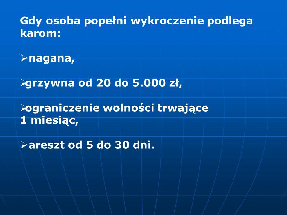 Gdy osoba popełni wykroczenie podlega karom:  nagana,  grzywna od 20 do 5.000 zł,  ograniczenie wolności trwające 1 miesiąc,  areszt od 5 do 30 dn