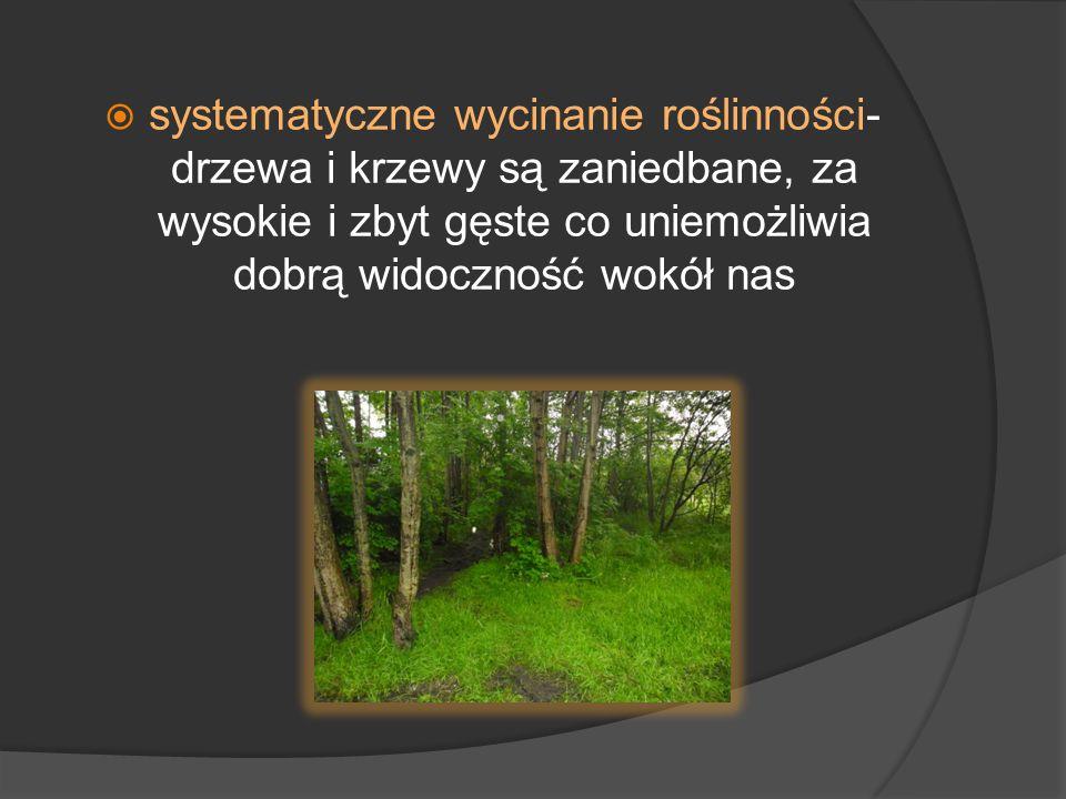  systematyczne wycinanie roślinności- drzewa i krzewy są zaniedbane, za wysokie i zbyt gęste co uniemożliwia dobrą widoczność wokół nas