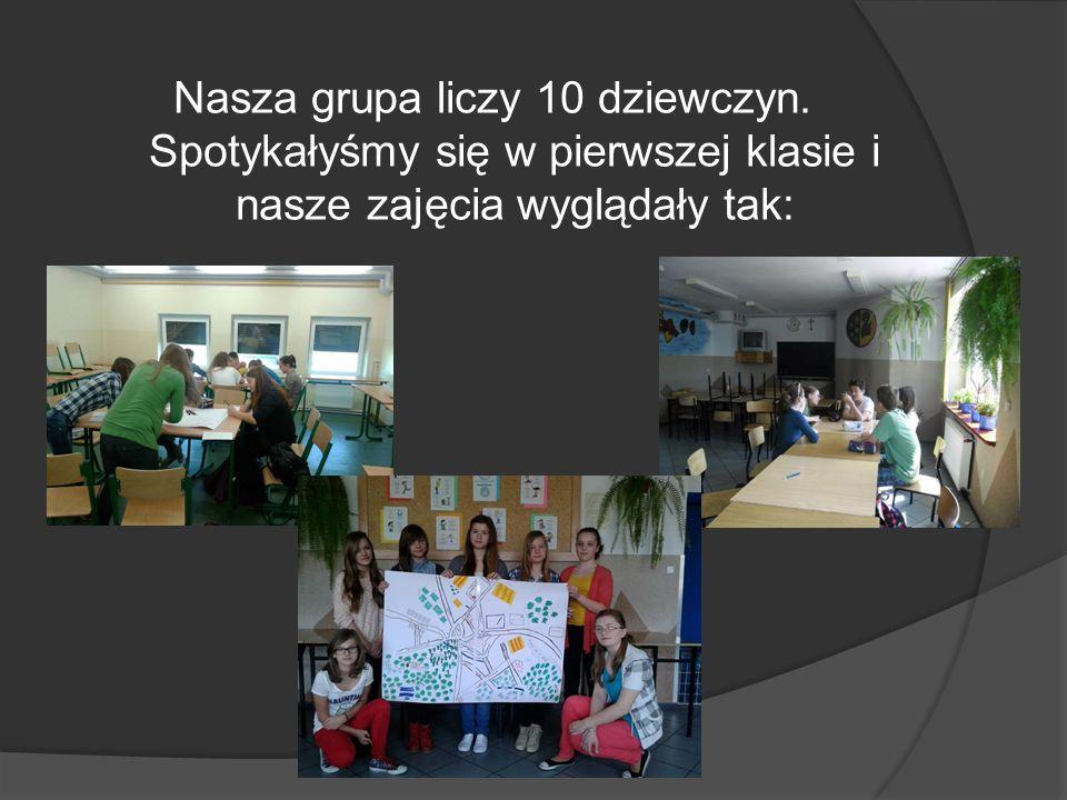 Nasze działania: -zajmujemy się terenem łączącym Farskie Łąki i Zalew - zbierałyśmy podpisy pod naszą petycją -nagrałyśmy film -podsumowaniem naszej pracy jest spotkanie z Panem Burmistrzem.