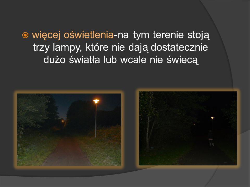  więcej oświetlenia-na tym terenie stoją trzy lampy, które nie dają dostatecznie dużo światła lub wcale nie świecą