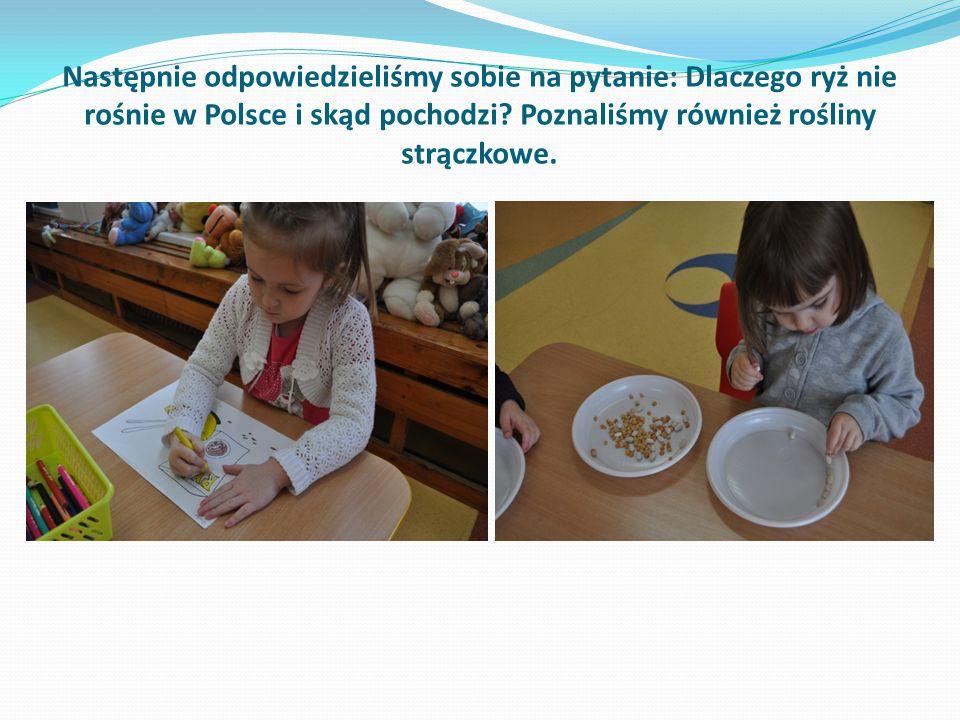 Następnie odpowiedzieliśmy sobie na pytanie: Dlaczego ryż nie rośnie w Polsce i skąd pochodzi.