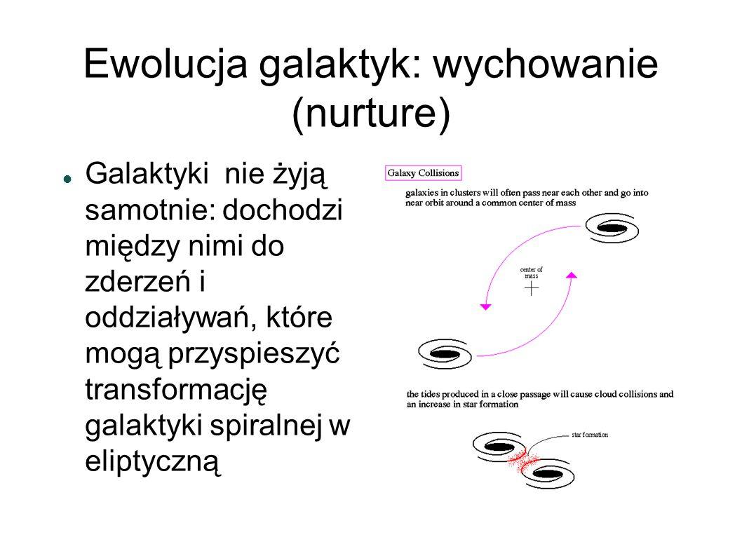 Ewolucja galaktyk: wychowanie (nurture) Galaktyki nie żyją samotnie: dochodzi między nimi do zderzeń i oddziaływań, które mogą przyspieszyć transforma