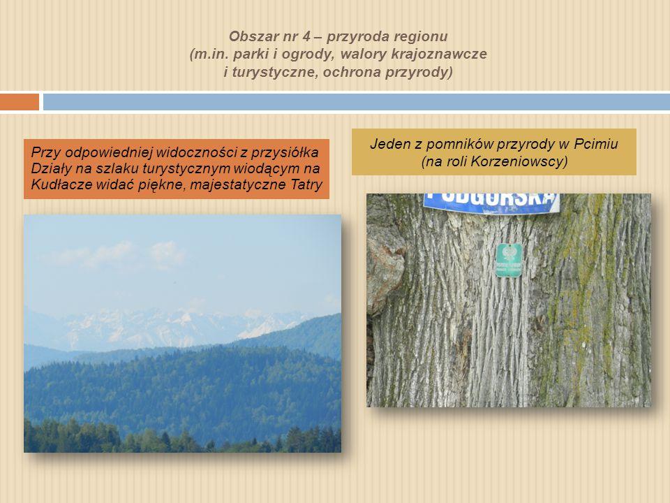 Obszar nr 4 – przyroda regionu (m.in.