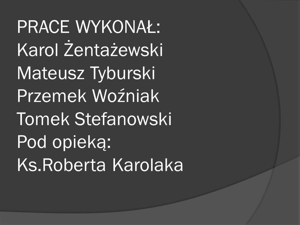 PRACE WYKONAŁ: Karol Żentażewski Mateusz Tyburski Przemek Woźniak Tomek Stefanowski Pod opieką: Ks.Roberta Karolaka